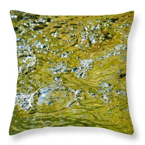 Water Throw Pillow featuring the photograph Bubble Beauty by Elizabeth Hart