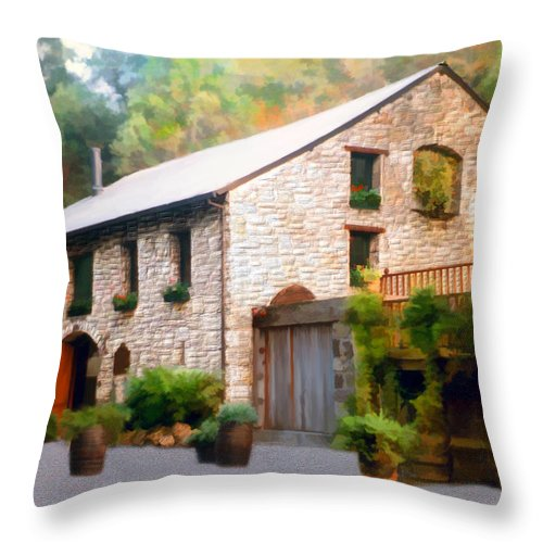 Winery Throw Pillow featuring the photograph Buenavista Winery by Kurt Van Wagner