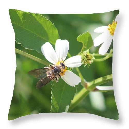 Bumble Bee Throw Pillow featuring the photograph Bumble Bee 1 by Michelle Powell