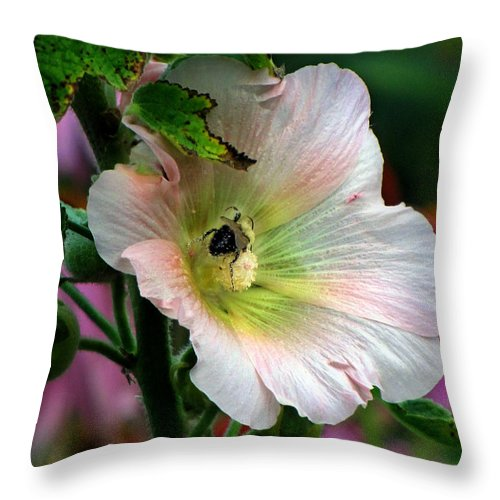 Bee Throw Pillow featuring the photograph Bumble Bee Pollen Collector by Ms Judi