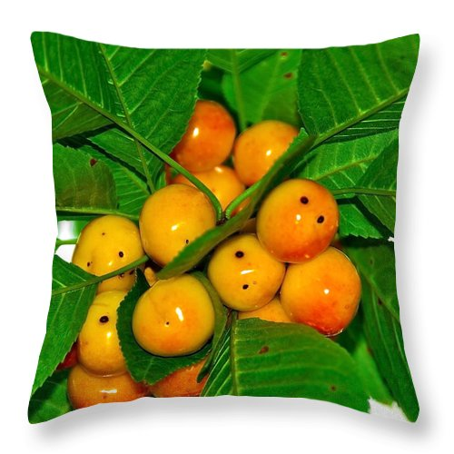 Black Throw Pillow featuring the photograph Bunch Of Cherries by Svetlana Sewell