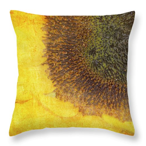 Sunflower Throw Pillow featuring the photograph Burnt Memories by Traci Cottingham
