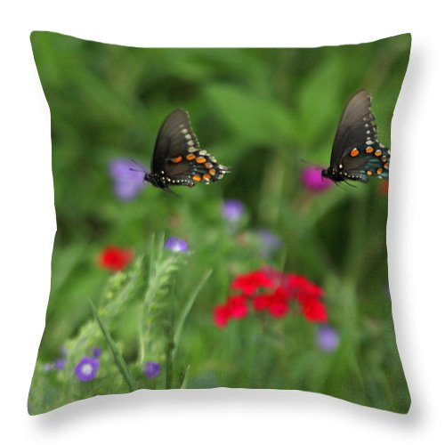 Throw Pillow featuring the photograph Butterfly Chase by Susan Rovira