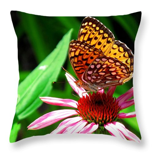 Nature Throw Pillow featuring the photograph Butterfly by Mary Ellen Mueller Legault