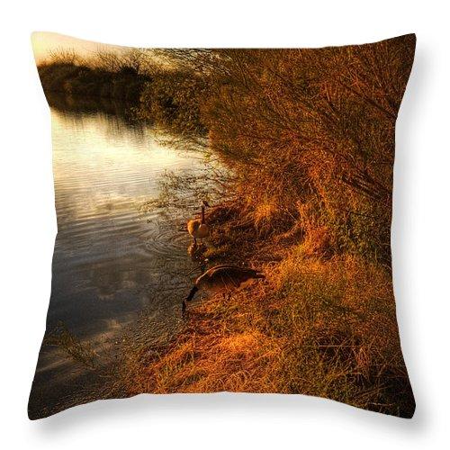 Sunset Throw Pillow featuring the photograph By The Evening's Golden Glow by Saija Lehtonen