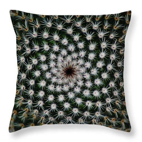 Cactus Throw Pillow featuring the photograph Cacti by Ben Upham III