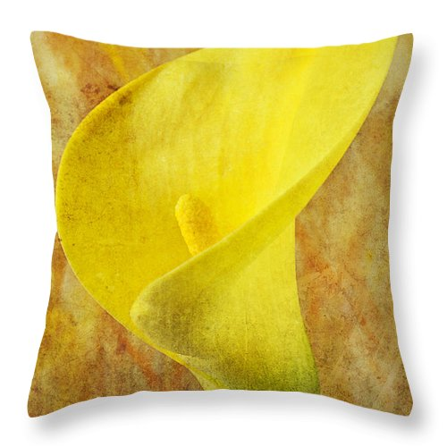 Yellow Throw Pillow featuring the photograph Calla Lily Beauty by Garry Gay