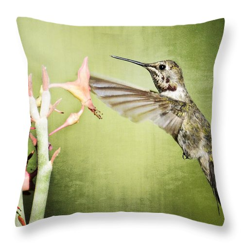 Calliope Hummingbird Throw Pillow featuring the photograph Calliope Hummingbird by Saija Lehtonen