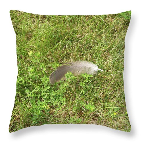 Bird Throw Pillow featuring the photograph Canada Goose Feather by Corinne Elizabeth Cowherd