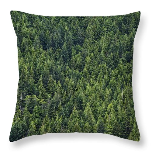 B.c. Throw Pillow featuring the photograph Canadian Boreal Forest. by John Greim