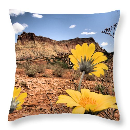 Capitol Reef National Park Throw Pillow featuring the photograph Capitol Flowers by Adam Jewell