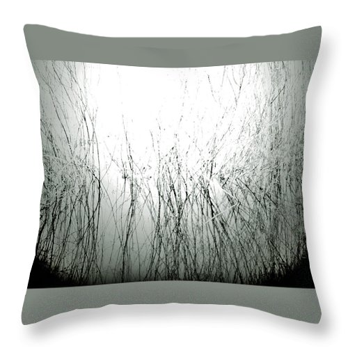 Street Photography Photographs Framed Prints Photographs Framed Prints Throw Pillow featuring the photograph Captured by The Artist Project