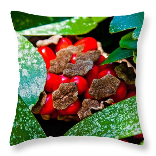 Kisses Throw Pillow featuring the photograph Cardboard Kisses by Christine Stonebridge