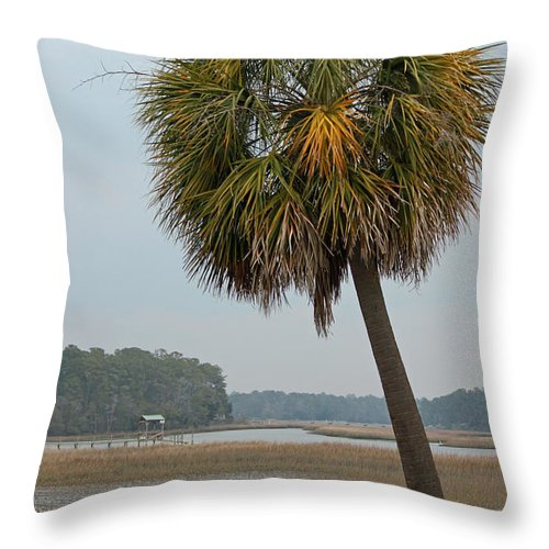Palmetto Throw Pillow featuring the photograph Carolina Palmetto by Suzanne Gaff