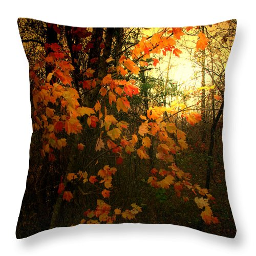 Tree Throw Pillow featuring the photograph Cascade by Nina Fosdick