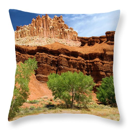 The Castle Throw Pillow featuring the photograph Castle In The Capitol by Adam Jewell