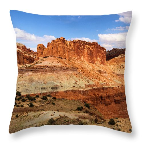 Castle Throw Pillow featuring the photograph Castle In The Distance by Adam Jewell