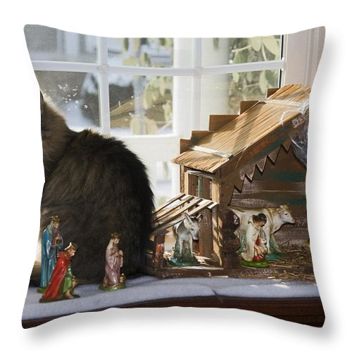 Fluffy Cat Sitting Among Christmas Creche Throw Pillow featuring the photograph Cat In Creche by Sally Weigand