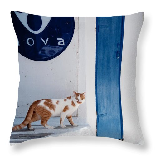 Cat Throw Pillow featuring the photograph Cat In Mykonos by Laura Melis