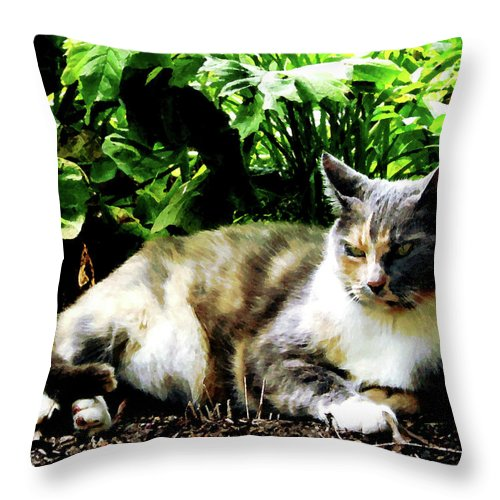 Cat Throw Pillow featuring the photograph Cat Relaxing In Garden by Susan Savad