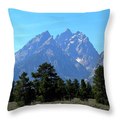 Grand Teton National Park Throw Pillow featuring the photograph Cathedral by Eric Tressler