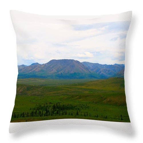Alaska Throw Pillow featuring the photograph Chapters Of Earth by Michael Anthony