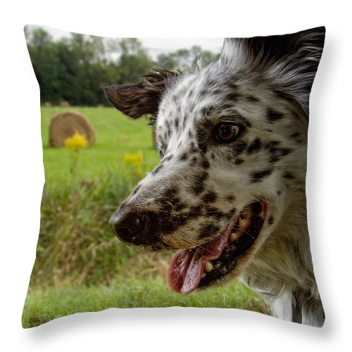 Xdop Throw Pillow featuring the photograph Charcoal by John Herzog