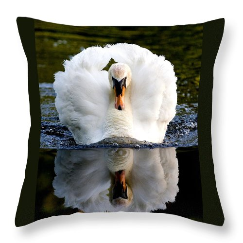 Swan Throw Pillow featuring the photograph Charging Swan by Mark Heywood