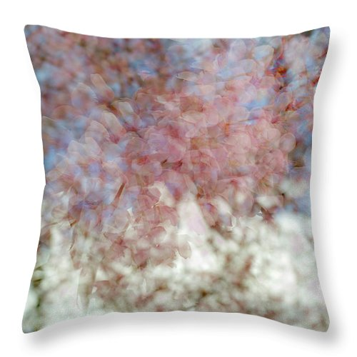 Abstract Throw Pillow featuring the photograph Cherry Blossom Abstract by Gary Eason