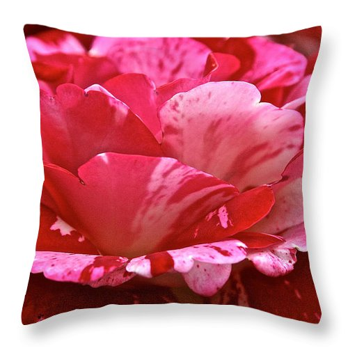 Floral Throw Pillow featuring the photograph Cherry Chip Swirl by Susan Herber