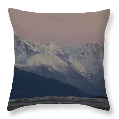Nobody Throw Pillow featuring the photograph Chilkat River Flats And Coastal by Michael S. Quinton