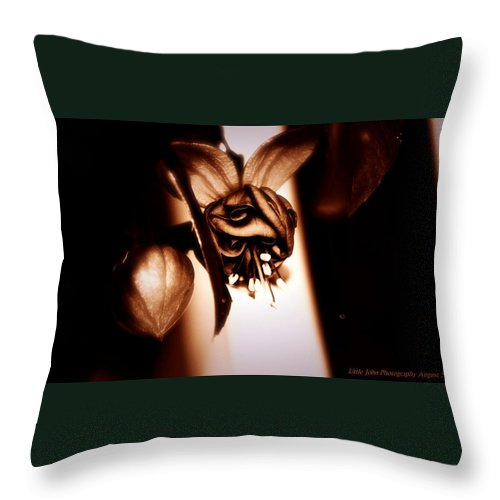 Chocolate Throw Pillow featuring the photograph Chocolate Silk Fuchsia II by Jeanette C Landstrom
