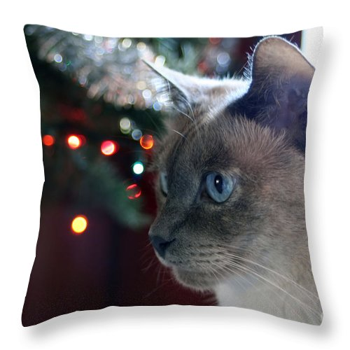 Siamese Cat Throw Pillow featuring the photograph Christmas Cat by Susan Stevenson