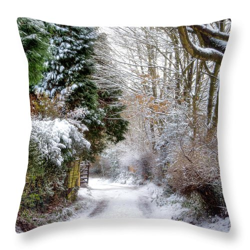 Snow Throw Pillow featuring the photograph Christmas On The Chase by Ann Garrett