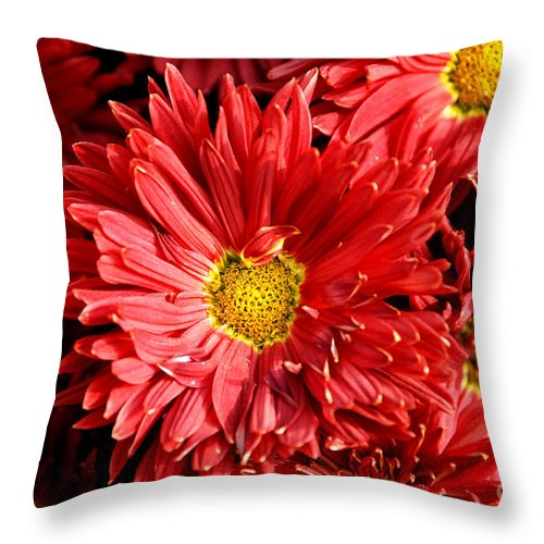 Flowers Throw Pillow featuring the photograph Chrysanthemums by Pravine Chester