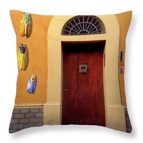 Cicada Throw Pillow featuring the photograph Cicada Door Arles France by Dave Mills