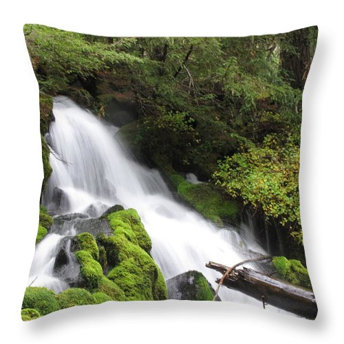 Water Throw Pillow featuring the photograph Clear Water by Katie Wing Vigil