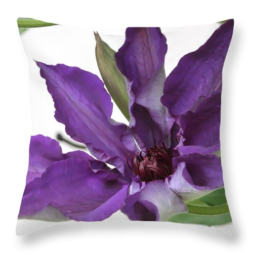 Clematis Throw Pillow featuring the photograph Clematis by Angie Vogel