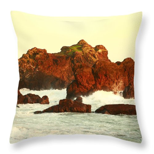 Seascape Throw Pillow featuring the photograph Cliffs In The Warm Evening Light by Gaspar Avila