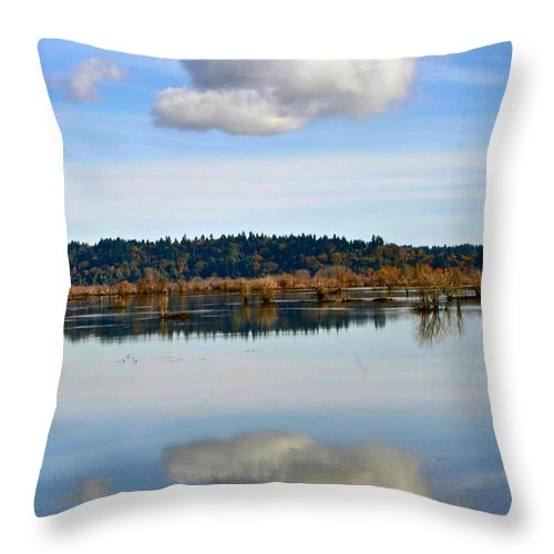 Photography Throw Pillow featuring the photograph Cloud by Sean Griffin