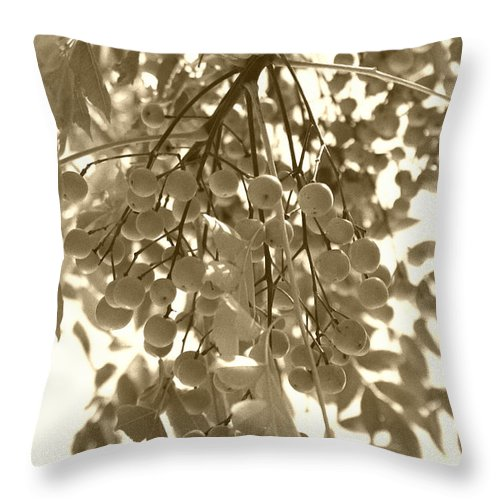 Berries Throw Pillow featuring the photograph Cluster by Nina Fosdick