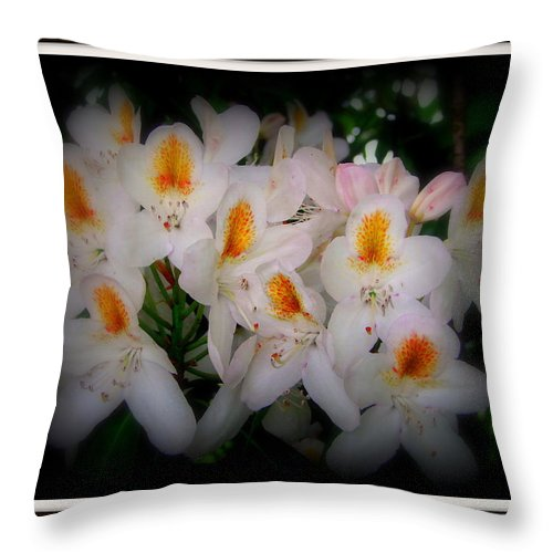 Scottish Throw Pillow featuring the photograph Cluster by Priscilla Richardson