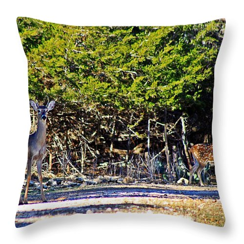 Axis Throw Pillow featuring the photograph Co Habitating by Monica Wheelus