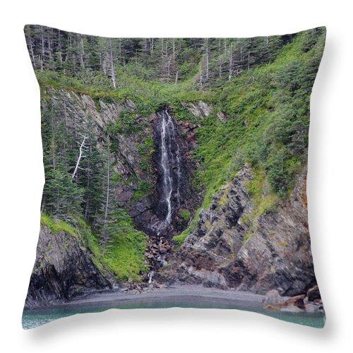 Shore Throw Pillow featuring the photograph Coastal Fall by Rick Monyahan