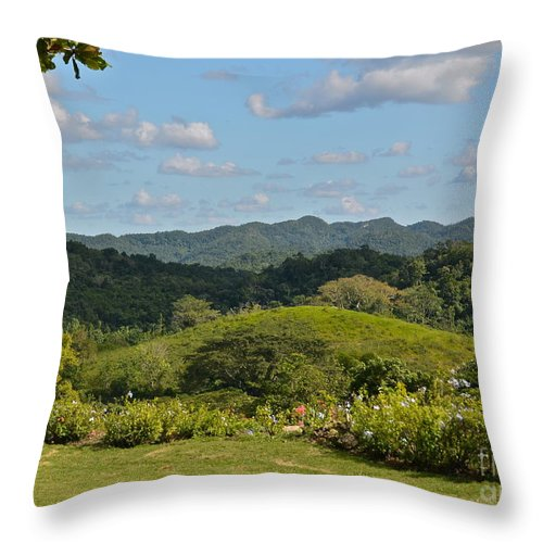 Mountains Throw Pillow featuring the photograph Cockpit Mountains by Carol Bradley