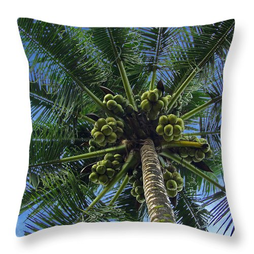 Asia Throw Pillow featuring the photograph Coconut Palm by Mark Sellers