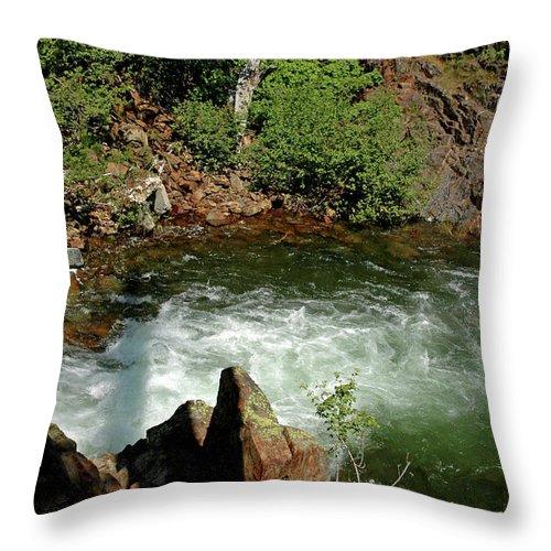 Usa Throw Pillow featuring the photograph Cold Creek Waters Glen Alpine Creek by LeeAnn McLaneGoetz McLaneGoetzStudioLLCcom