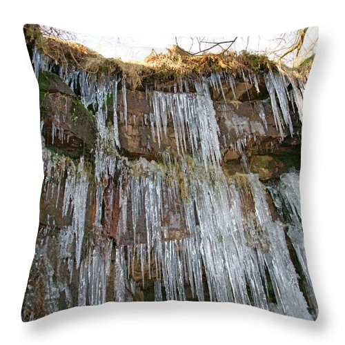 Cold Throw Pillow featuring the photograph Cold Day In The Valley 4 by David Birchall