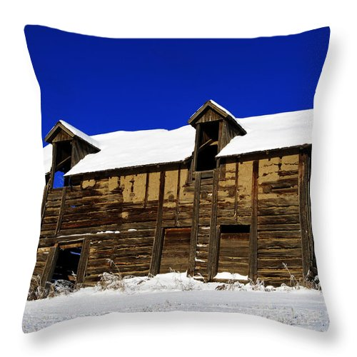 Sky Throw Pillow featuring the photograph Cold Mountain by The Artist Project
