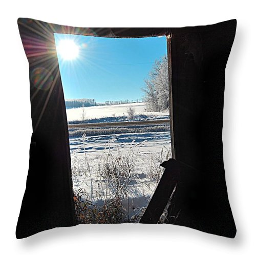 Throw Pillow featuring the photograph Cold Through by The Artist Project